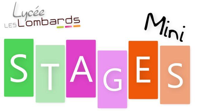 Mini Stage.jpg